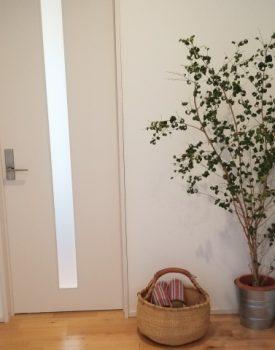 玄関ドアを取り換えよう!①ドアの種類