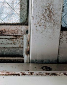 窓やサッシ周りのカビ退治!安全な方法をご紹介