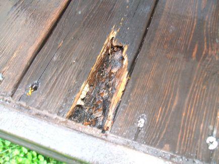 一部、虫に喰われてしました。この一部だけを補修は難しいので、パーツごと変えます。