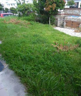 庭の手入れ 草むしり 草刈り